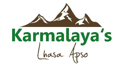 KARMALAYA's Lhasa Apso